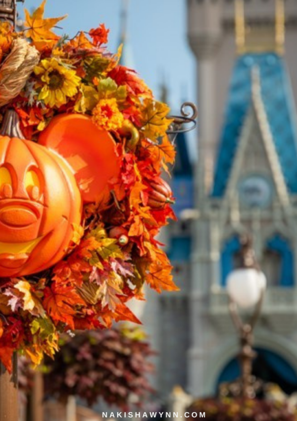Fall Disney World Vacation Tips You Must Know
