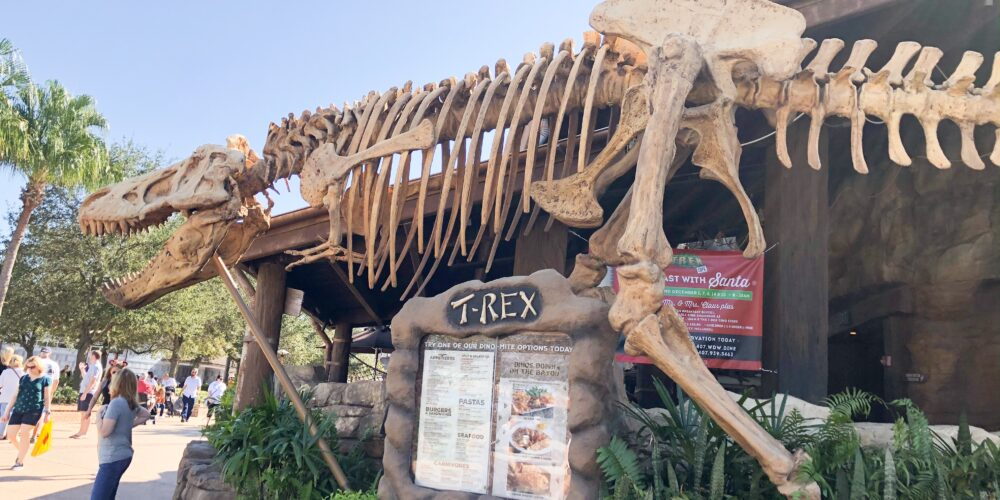 Trex Cafe