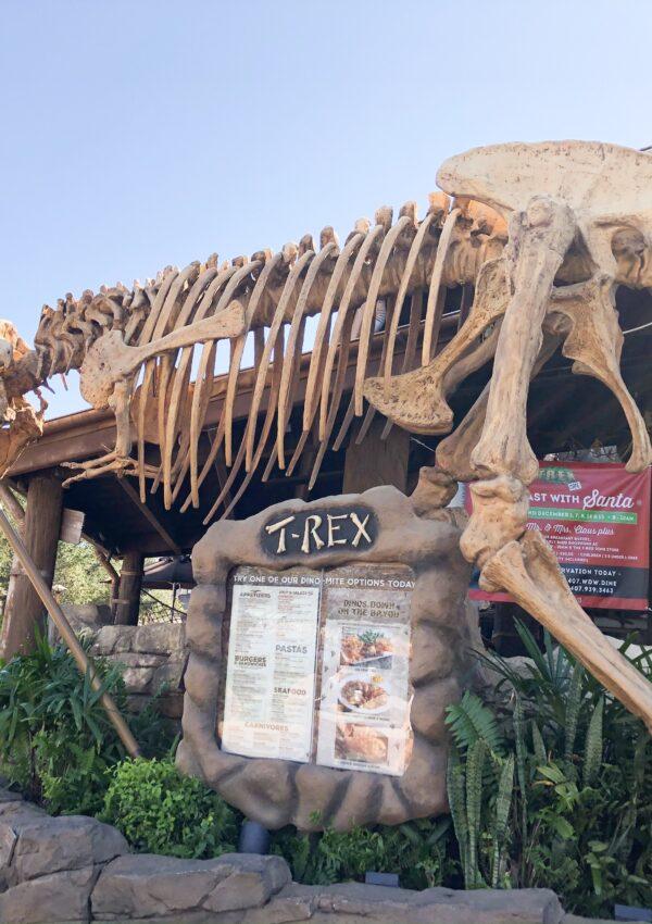 A Dino Loving Birthday Celebration at T-Rex Cafe Disney Springs