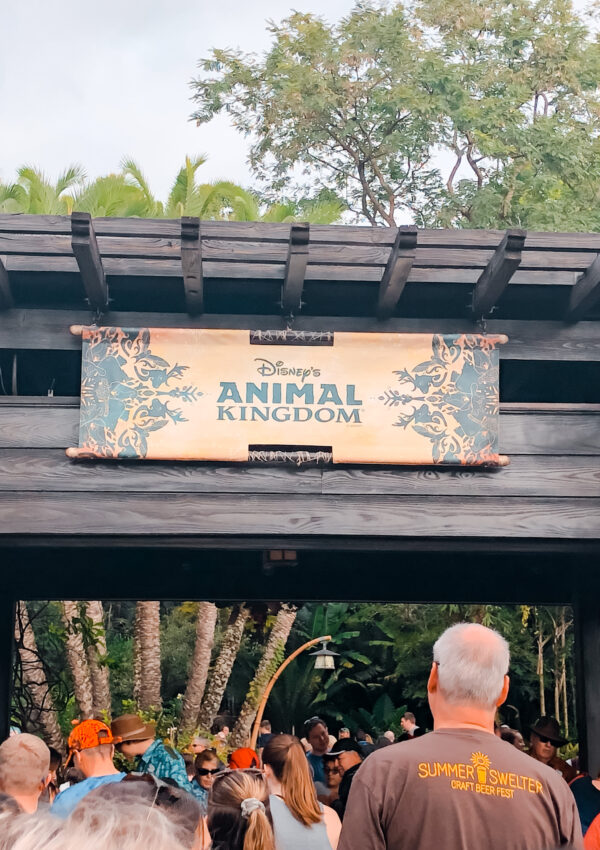 7 Things you Must Do on Your First Visit to Animal Kingdom Disney World