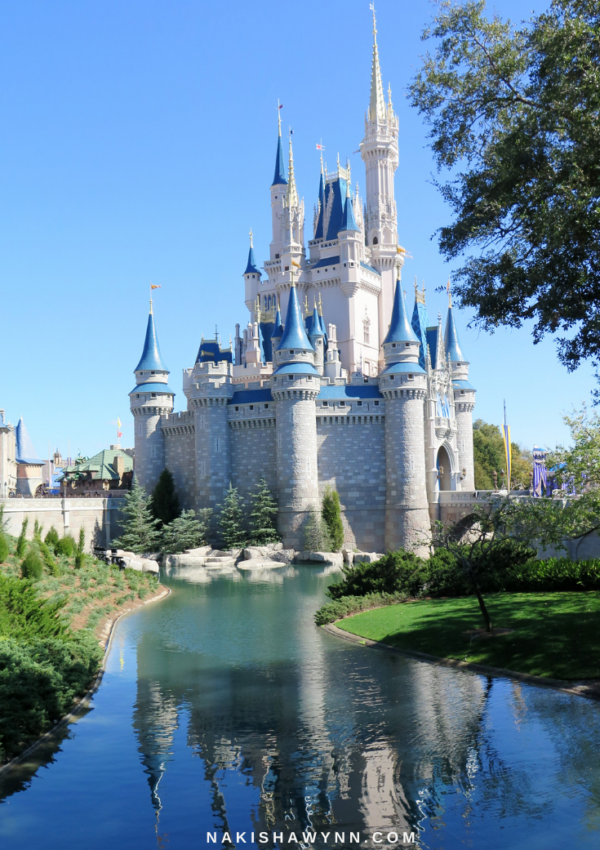 What to Expect as Disney World Reopens